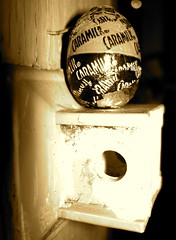 The Caramilk Secret Egg (Roger Cullman) Tags: toronto canada sepia easter hide eggs kensington kensingtonmarket foundobject hunt easteregghunt eastereggs eastersunday april16 newmindspace easter2006 newmindspacecom egghunt2006 april162006 kevinandlori loriandkevin photorogercullmanallrightsreserved