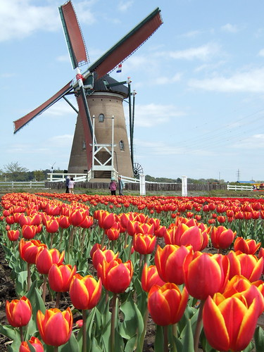 Dutch Windmill in Japan