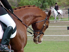 NRA - Eventing - Dressage Stage - Saturday 22 April 2006