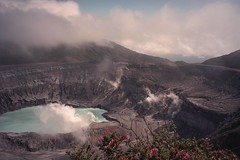 Volcan Poas, Costa Rica (becklectic) Tags: flowers 2002 clouds volcano costarica 123 fromabove depthoffield 100 poas volcanpoas 230countries 230countriescostarica 00617289503 worldtrekker