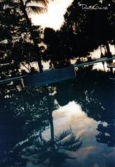 156 Siladen - Tramonto, riflessi (*DaniGanz*) Tags: sunset reflection tag3 taggedout clouds indonesia island reflex tag2 tramonto nuvole tag1 north piscina palm palma reflexion sulawesi manado riflesso bunaken siladen bunakenmarinepark swummingpool daniganz fotoincatenate