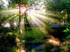 Blessings at Sunrise (Gail S) Tags: light sun mist haven home fog topv2222 sunrise wow ilovenature interestingness1 pavilion heavenly sunbeam ourhome blessed godshand payitforward spring06 mireasrealm welivehere mywinners theplacewhereyoulive fiveflickrfavs