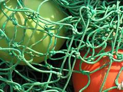 caught (trAvelpig) Tags: orange green net catchycolors us newjersey nj photodomino capemay buoys gardenstate coolpix8800 travelpiginterestingness buoyant photodotocontest1 photodomino251