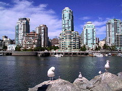 Vancouver (kenyai) Tags: sea sky seagulls canada birds skyline vancouver clouds cityscape skyscrapers canong3 gabbiani gabbiano i500 interestingness323