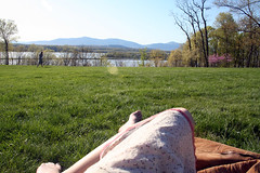 Catskills and skirt - by Adrianne Lacy