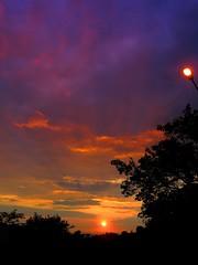 Alternanza (Racchio) Tags: sunset sun tramonto streetlamp sole marino lampione