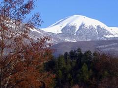 strellc peak in early spring (kosova cajun) Tags: mountain snow landscape pines kosova kosovo balkans kosov peisazh dean southeasterneurope bjeshk bor strellcpeak majaestrellcit pranver