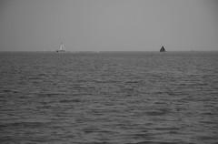 Sailing (Kleefmeister) Tags: hoorn boats ijsselmeer kleefmeister