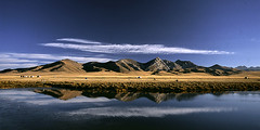 Song Kul Panorma, Kyrgyzstan (dwrawlinson) Tags: morning cloud mountain lake reflection nature landscape asia kul song central yurt yurts kyrgzstan