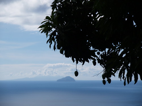 Redonda and mango tree from Montserrat