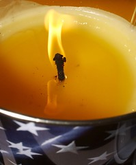 It´s An American Flag Mosquito Repellant Candle, Not An American Flag On Fire--Kindly Resist The Urge To Pass A Constitutional Amendment Because I Didn´t Want To Die From A Mosquito Bite