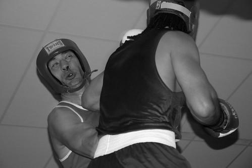 fight boxing heavyweight porirua