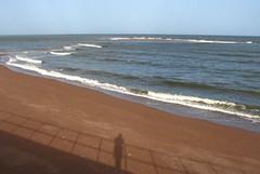 Watching the tide (egefan - Suzan Almond) Tags: blue shadow red sea beach water sand waves gulls small sandbank ebbtide