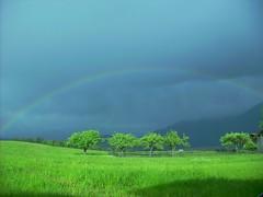 Schöne Aussicht mit Regenbogen (kati_aussi) Tags: tree green austria tirol rainbow grün bäume regenbogen mieming obsteig fourfavs fourfavs2 fourfavs3 bezirkimst