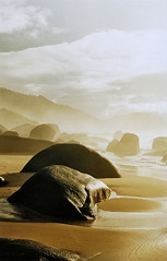 Stones taught me to fly... (Alê Santos) Tags: brazil sun sol praia beach rio stone brasil paraty sunrise walking de sand do janeiro areia walk parati pedras nascer trindade caminhas
