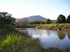Mullet Creek, Dapto
