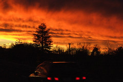 Sunset at Lichfield, South Waikato (EssjayNZ) Tags: sunset newzealand orange tag3 taggedout fire gold tag2 tag1 2006 essjaynz lichfield taken2006 theworldthroughmyeyes sarahmacmillan