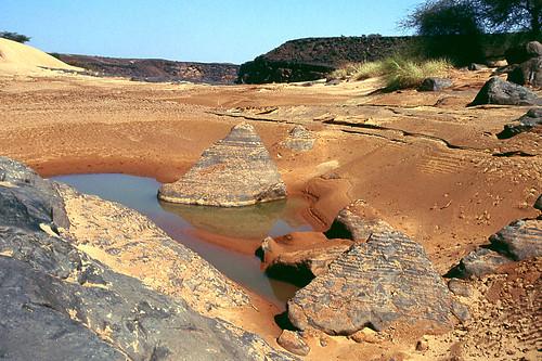 لايعرف موريتانيا .... المليون شاعر ...(صور)