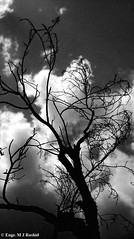 Clouds (Engineer J) Tags: pakistan all pics pic junaid m photograph lahore sama rashid paksitan satta temptag1 uet engr competitioncontrast bwintfav