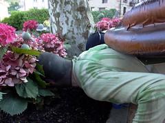 21 barraskiloa lora artean (fakafaka) Tags: snail caracol elgeta jaiak barraskiloa jaixak fakafaka jaixak2006 elgetakojaixak2006barraskiloak