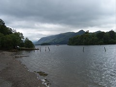 SV500123 (how animals work) Tags: derwent derwentwater reneandjaneswedding