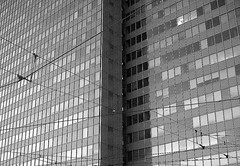 In contrast (Supermietzi) Tags: windows bw white black glass architecture germany deutschland wire fenster grain architektur nrw monochrom dsseldorf glas duesseldorf leitungen draht drhte fractures dreischeibenhaus thyssenkrupphochhaus