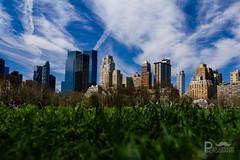 Central Park View (Pixi.St) Tags: nyc newyorkcity sky usa newyork grass architecture clouds america skyscraper centralpark himmel wolken architektur amerika wolkenkratzer