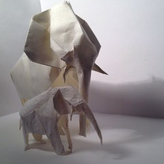 Origami elephant -protection - ShaunlerGracie (ShaunlerGracie_origami) Tags: elephant art animal paper mammal zoo origami artist handmade trunk paperfolding origamiart shaunlergracie