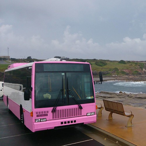 #PinkPartyBus still looking hot on a cloudy day like today. Bring out the sunshine.