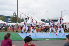 DC0_1195 (Eisbier) Tags: sport alaska training demo centennial do martial arts martialarts taekwondo celebration anchorage tae tkd kwon champ champmartialarts
