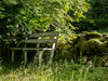 Bench and a stone fence (Jonne Naarala) Tags: digilux2 finland leica leicadigilux2 bench cemetery fence graveyard