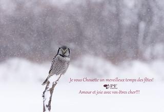 Chouette Noel pour vous tous et surout de la SANTÉ!!!!