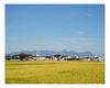 takasaki (Mériol Lehmann) Tags: landscape cityscape japan gunma takasaki paddyfield rice