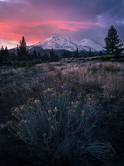 Morning View (Smi77y_OG) Tags: nature landscape perspective shasta mtshasta mountain northerncalifornia californiawilderness weed sunrise