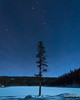 The Pointer (kevin-palmer) Tags: night sky astronomy astrophotography stars starry moonlight moonlit blue cold frigid winter december early morning sibleylake bighornnationalforest bighornmountains wyoming snow snowy white pine trees ursamajor bigdipper constellation polaris northstar solstice nikond750 tokina1628mmf28