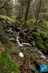 Harz 2016 I (Joon Stemmermann) Tags: harz water atumn trees garmany stone waterfall nationalpark montains green nikon tokina d3300