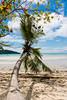 Slanted palm tree (malc1702) Tags: palmtree slantedpalmtree ocean beach nature beauty scenery scenic nikond7100 nikkor18140mm trave travelphotography vacation holiday mahe seychelles bluesky clouds wanderlust turquoisewaters
