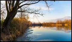 FreeTree (ELtano86) Tags: eltano86 reflection reflejo riflessi river lago lake landscapes naturale nature park natura