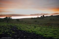 Brecon Beacon - Wales (JamieMarie Oaksford) Tags: wales walesuk breconbeacon natioanlpark sunset countryside uk landscape landscapephotography sunsetphotography walescountryside lushgreen
