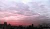 18:25 18.01.17 (jpmm) Tags: 2017 amsterdam sunset zuid wolken clouds altocumulus