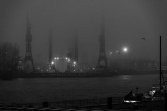 """Oh, how heavy is my heart"" / ""It's not enough to die, one has to be forgotten as well"" (Özgür Gürgey) Tags: 2016 24120mm bw d750 darkcity elbe hafen hamburg nikon sirjohnhurt architecture birds fog grainy lowlight germany"