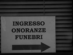 Bertaina_Giulia_12