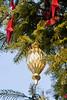 CW144 Christmas Ornaments (listentoreason) Tags: christmas usa holiday america canon unitedstates pennsylvania favorites places christmastree event ornament christmasornament longwoodgardens ef28135mmf3556isusm score30