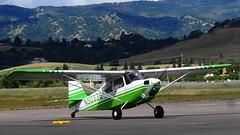 Bellanca 7GCBC (N50338) 1978 1 (Jack Snell - Thanks for over 26 Million Views) Tags: ca tree breakfast airport vacaville jimmy flight center legends 1978 pancake nut bellanca nuttree doolittle 7gcbc 20150328 20151024 n50338