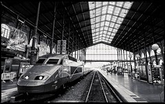 gare du Nord / Paris , France (leonlagben) Tags: voyage railroad travel windows roof light people bw abstract paris france glass station metal architecture train hall europe shadows gare geometry interior transport trails railway structure nb ombre diagonal trail cover toit halle mtal contrejour metalic tgv verre verrire chemindefer linescurves metallique thallys