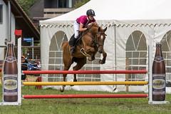 DSC07239_s (AndiP66) Tags: springen utzensdorf samstag saturday 25juli2015 2015 juli july pferd horse schweiz switzerland kantonbern cantonofbern concours contest wettbewerb horsejumping springreiten pferdespringen equestrian sports pferdesport sport sony sonyalpha 77markii 77ii 77m2 a77ii alpha ilca77m2 slta77ii sony70400mm f456 sony70400mmf456gssmii sal70400g2 andreaspeters utzenstorf bern ch