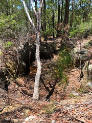 Quarried Sandstone Hole, Western Section of Berowra Valley National Park, Dural, Sydney, NSW (mypix4u2c) Tags: quarriedsandstonewaterhole dural nsw quarriedsandstone waterhole sydney historicsydney berowravalleynationalpark cartersroad cartersrd