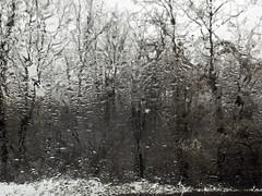 Lunch Break Daphanous Impressionist (Boneil Photography) Tags: boneilphotography brendanoneil canon powershot g16 winter snow landscape trees ma wet raw macro rain distortion diaphanous