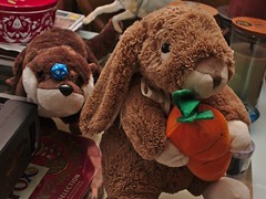 Bunny and otter (Darkhorse Winterwolf) Tags: bunny carrot christmas churro family otter