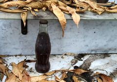 Beyond Expiration (YIP2) Tags: cocacola bottle remains decay leaves nostalgia past glass vintage detail abandoned stilllife white